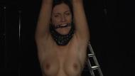 Slave Trap - Pic 4